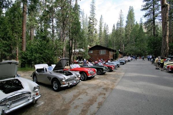 New Car Club Image 1