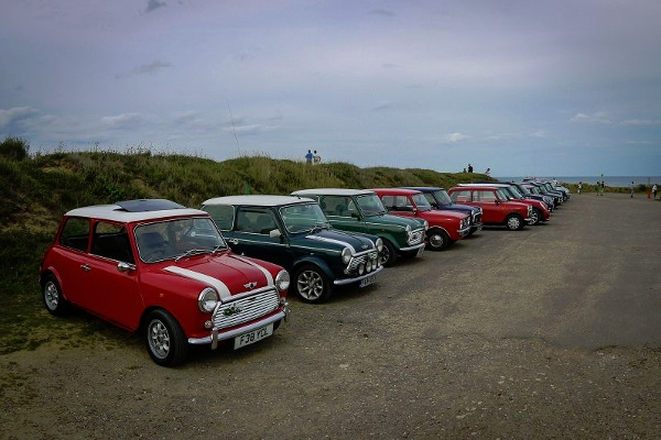 Minis lined up at a car club meeting